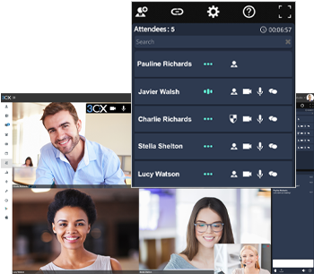 ip telephony videoconferencing